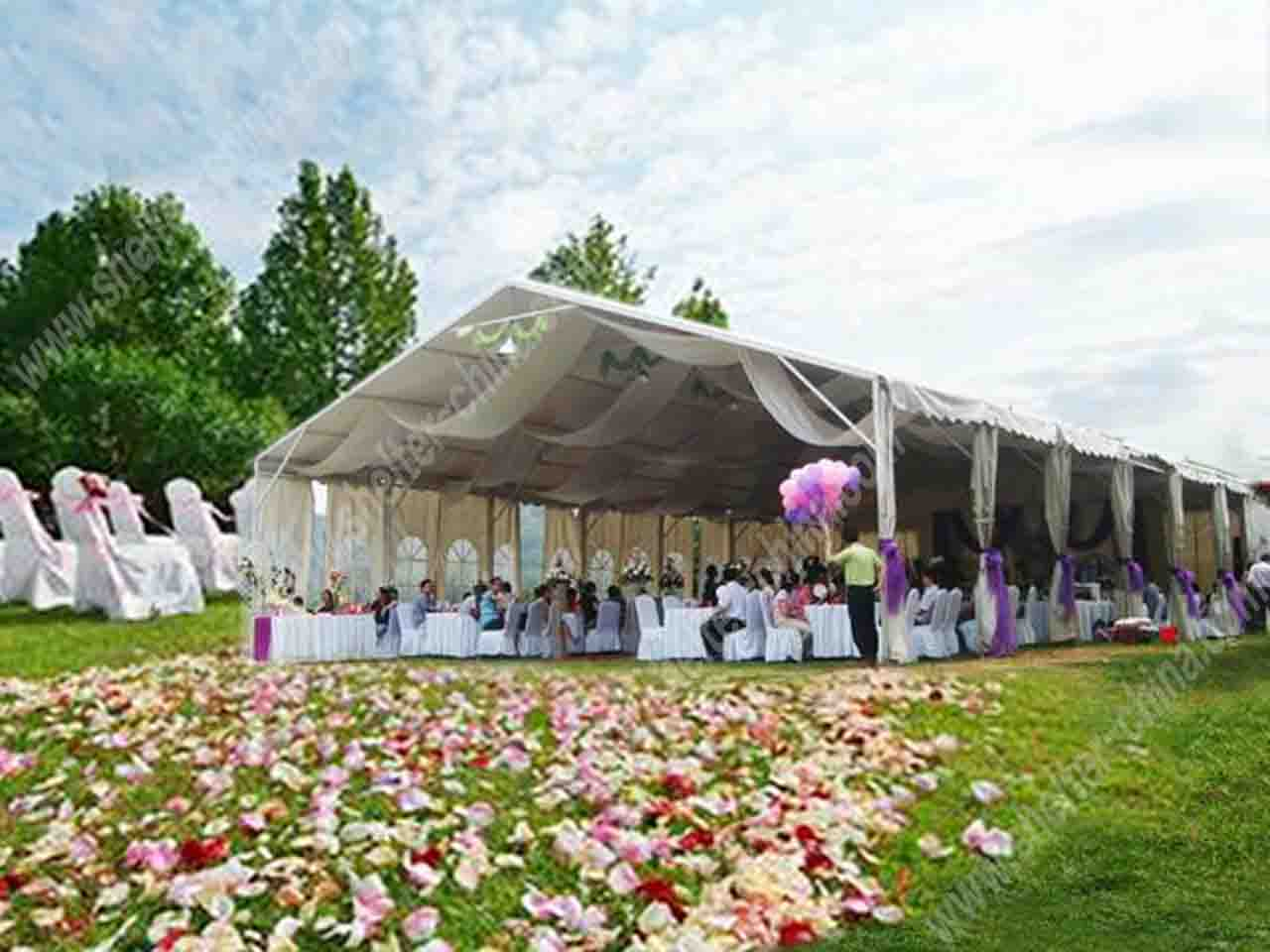 Canopy Walls