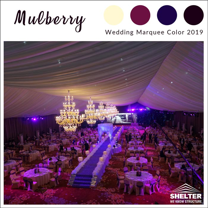 Mulberry-wedding-marquee-color-2019